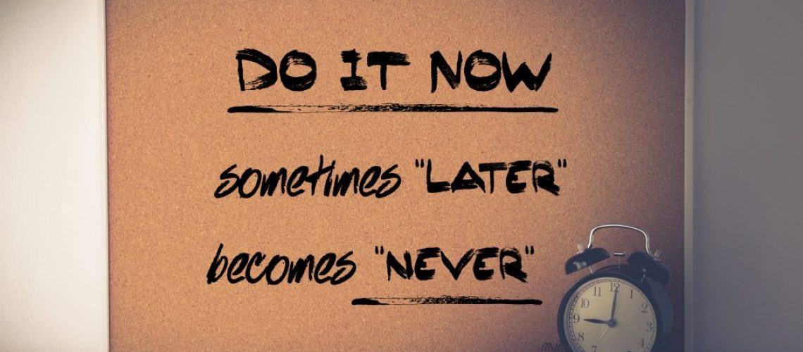 Inspirational quotation, Do it now, sometimes later becomes never, lifestyle, successful life